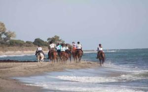 Courses Equestres